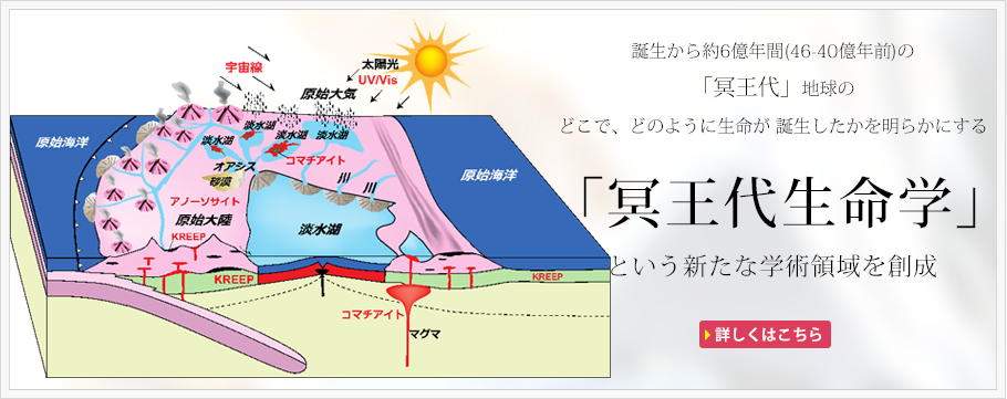 main_image3