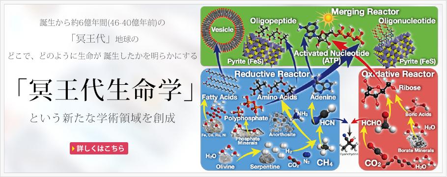 main_image1
